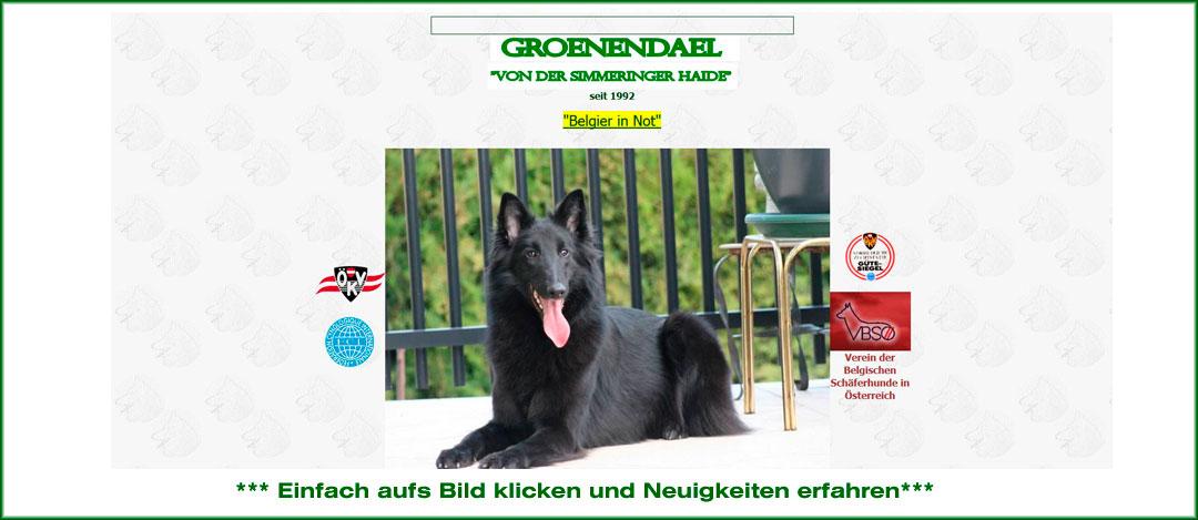 groenendael_eva
